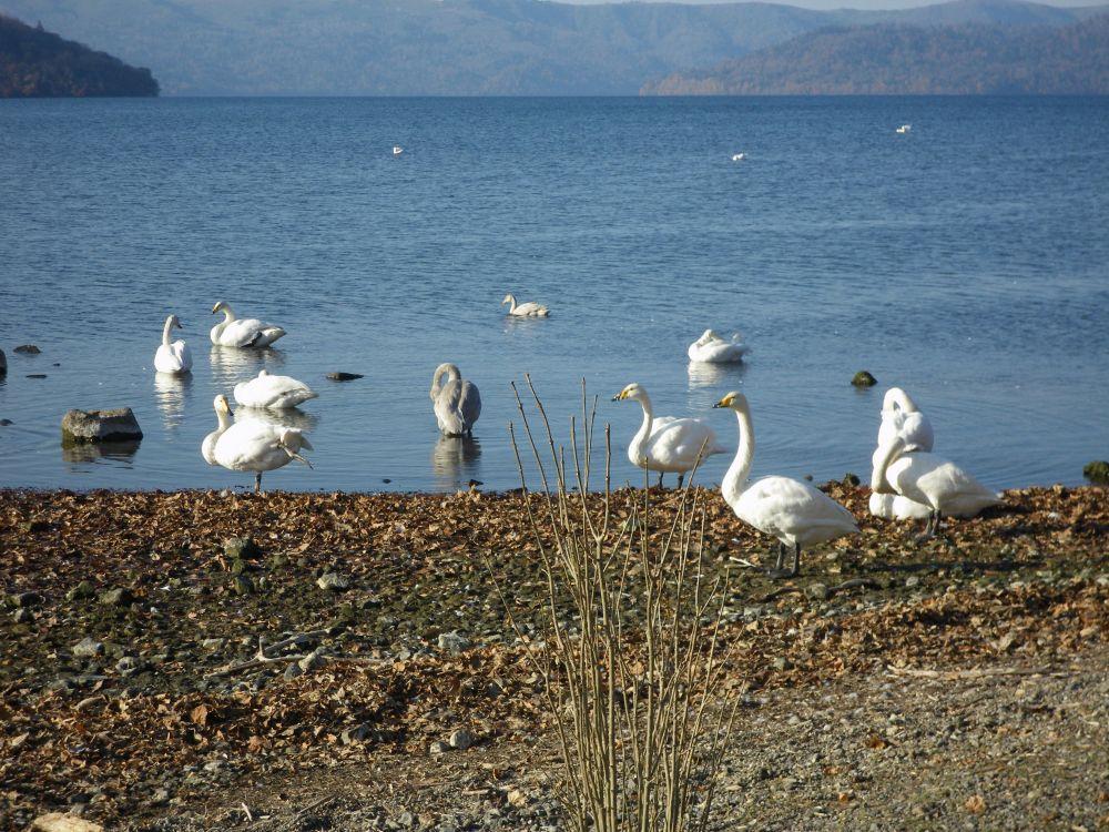 lac de Kussharo