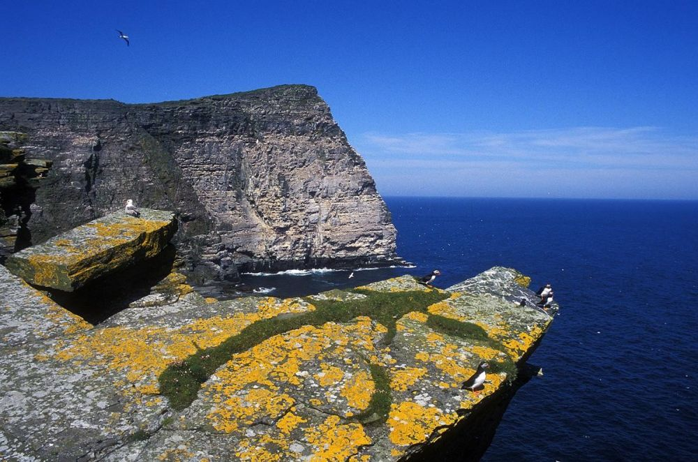 Paysage falaises îles Shetland Ecosse
