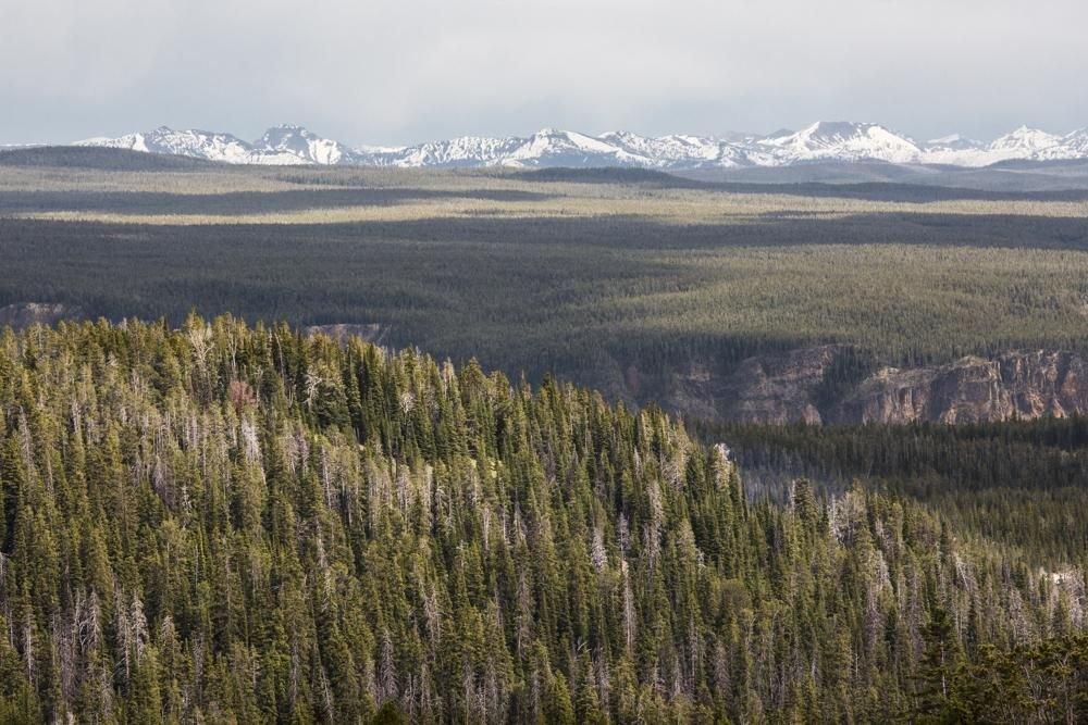 Photo voyage Yellowstone 4
