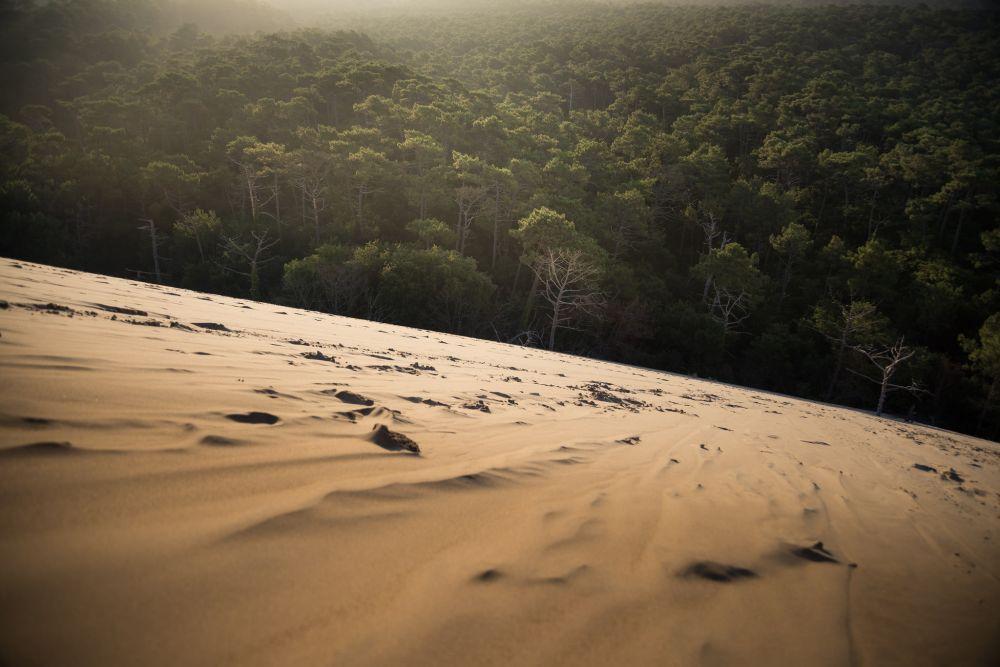 Dune du Pilat - Didier Baertschiger