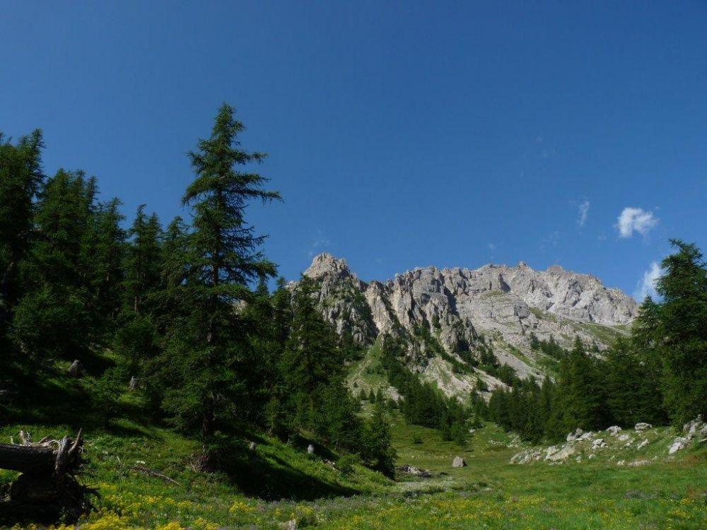 Montagne au printemps ©Christine Bartei