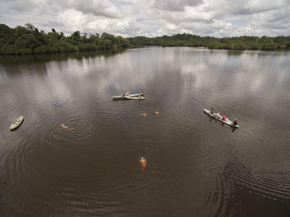 Baignade dans le Lac Piranha, Equateur © Amazon Explorer Manatee