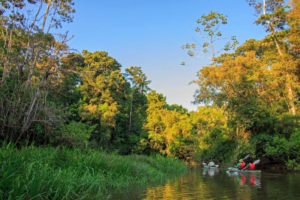 Canoë Kayak au coeur de la forêt riveraine © Manatee Amazon Explorer
