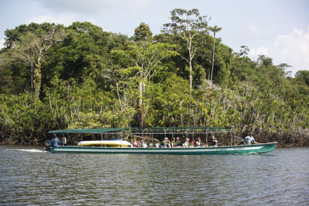 Excursion en canoë © Manatee Explorer