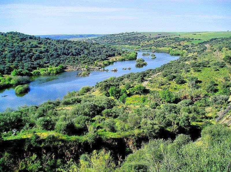 Rivière du Guadiana © Francisco Antunes