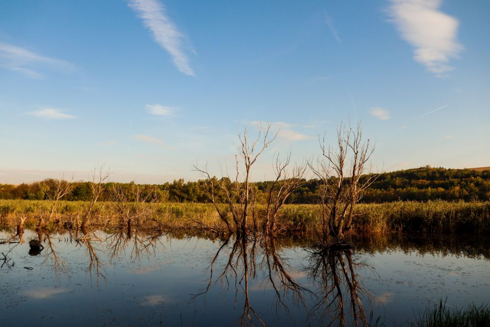 Lac Srebarna © Maud Durandeau