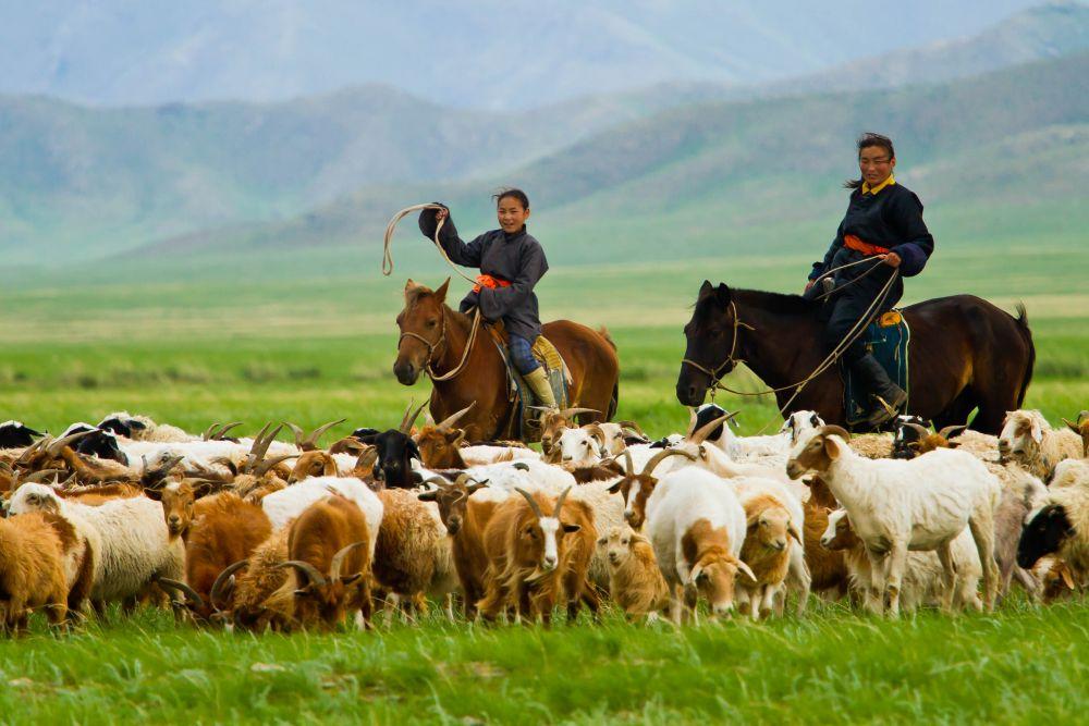 Mongolie © Paulo Fassina
