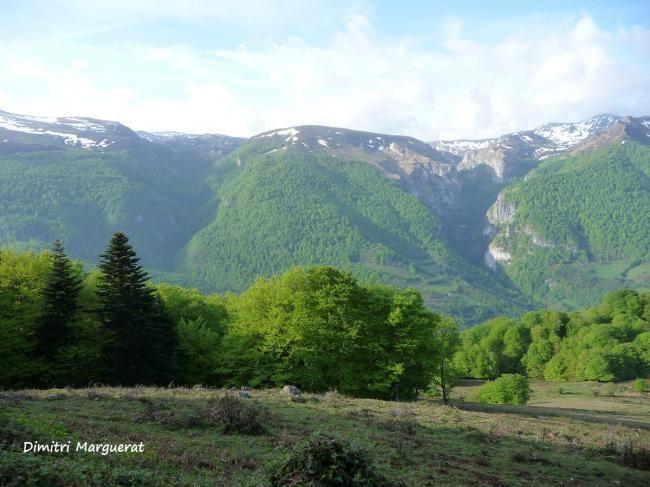 Canyon de Haute Soule - Dimitri Marguerat