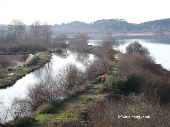 Marais d'Orx - Dimitri Marguerat