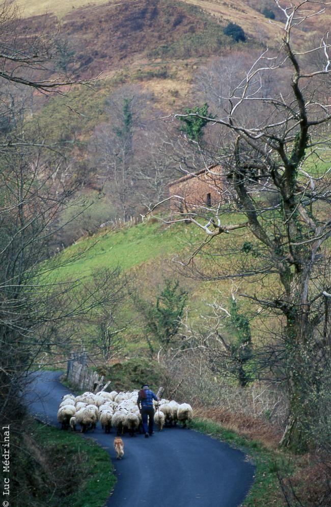 Pays basque - Luc Mérinal