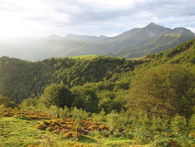 Vue depuis les chalets d'Iraty - LPO Aquitaine
