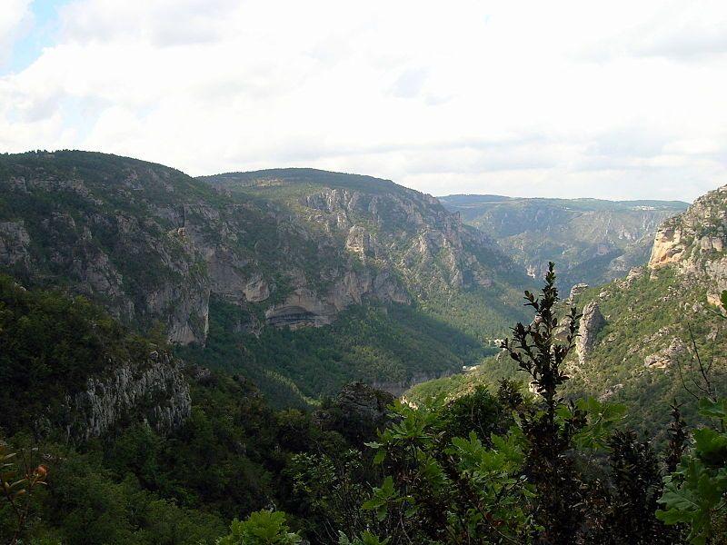 Les Grands Causses - Zarelia Choutime - Wikimedia Commons