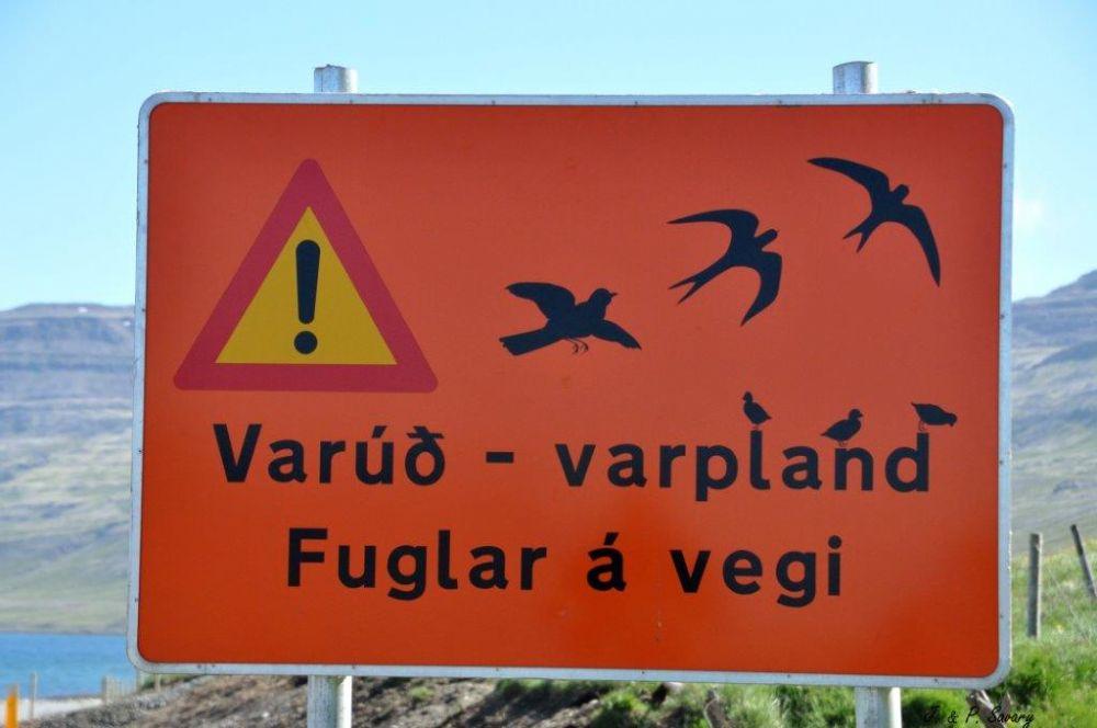 Panneau présence d'oiseaux ©JetP Savary