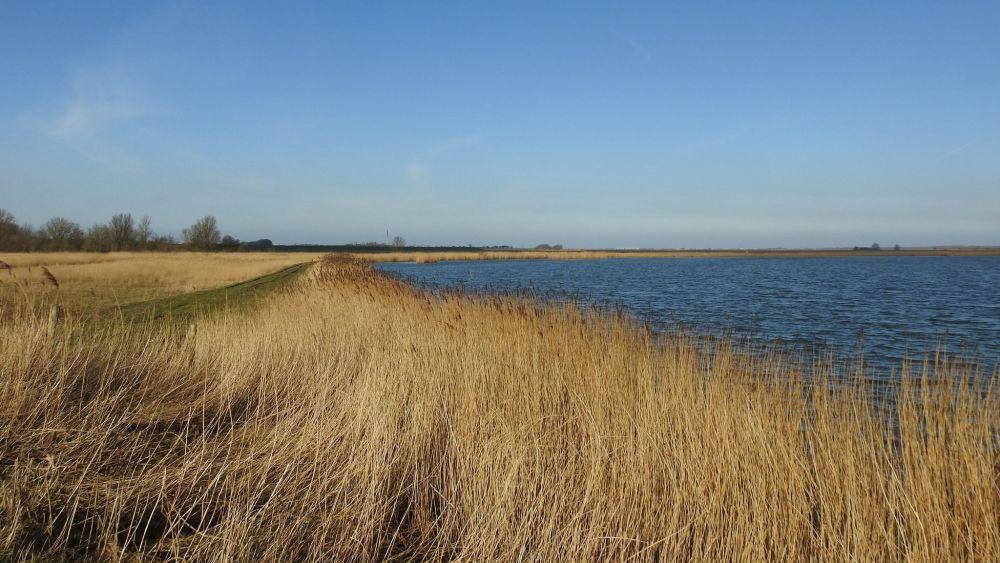 Parc national Lauwersmeer © Gertjan van Noord