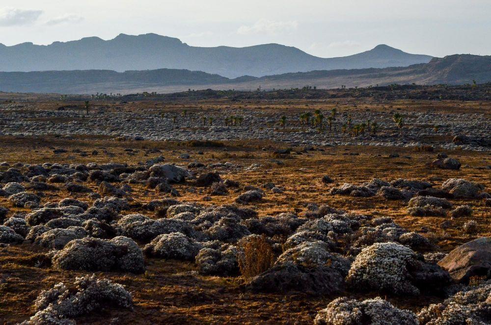 Plateau de Sanetti
