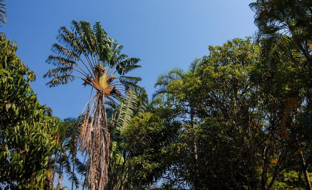 Photo voyage Madagascar 13