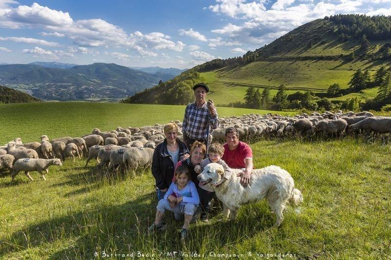 Famille d'éleveurs de brebis du Champsaur - Hautes-Alpes