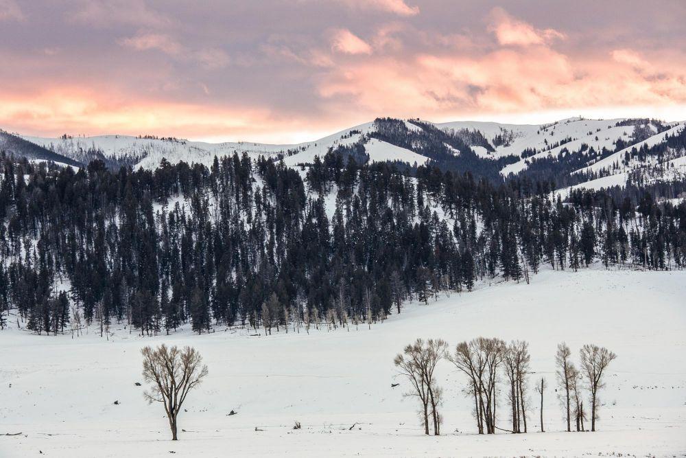 Photo voyage Yellowstone 22