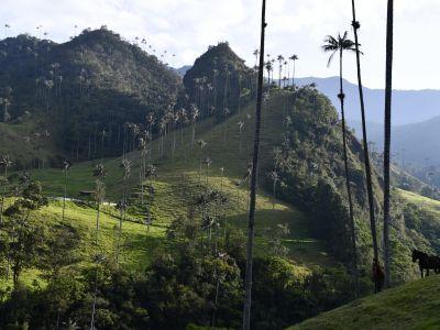 Colombie, L'esprit Nature