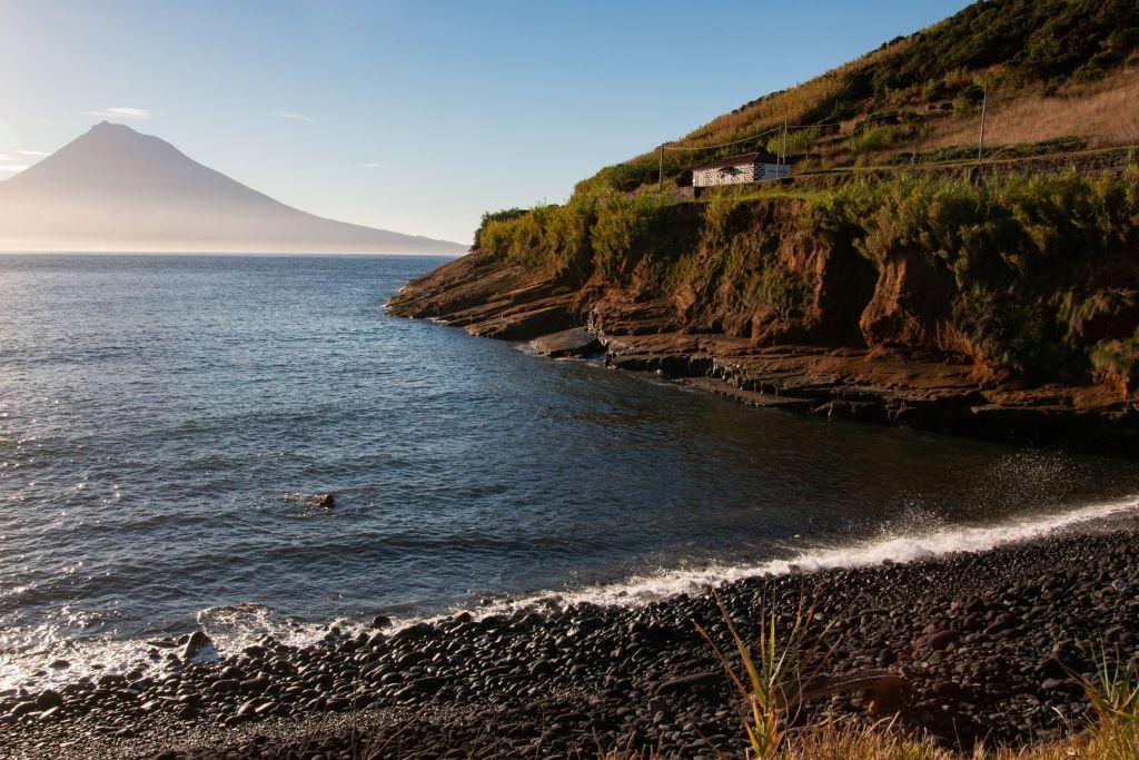 Observation des cétacés aux Açores