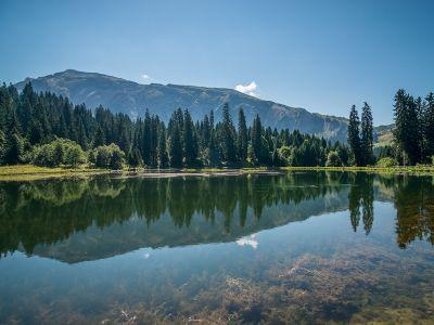 L'histoire géologique des Alpes