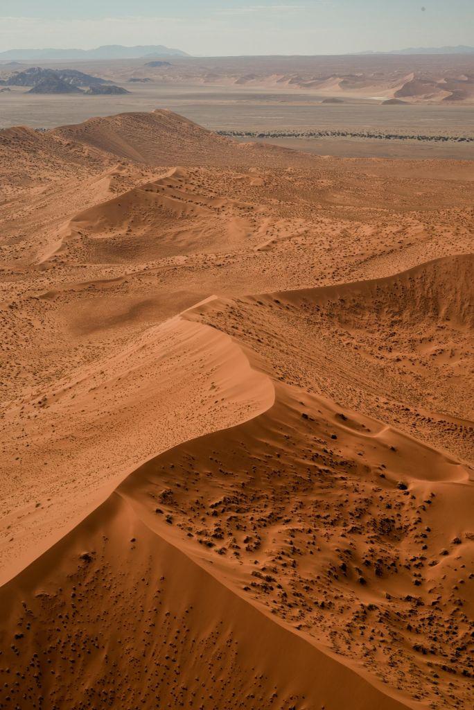 Safaris et désert du Namib
